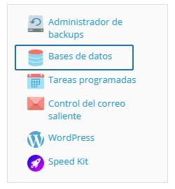 Panel de hosting - Base de datos