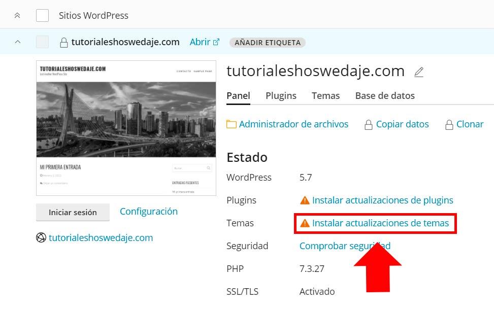 temas en WordPress desde Plesk