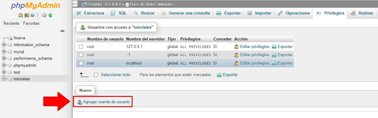 servidor local Xampp