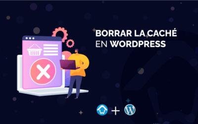 Borrar la caché en WordPress